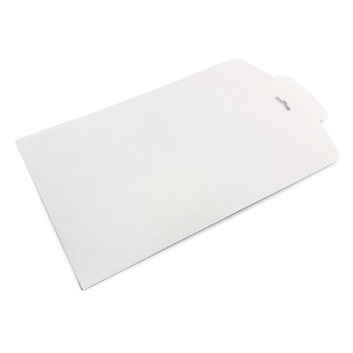 large-envelope